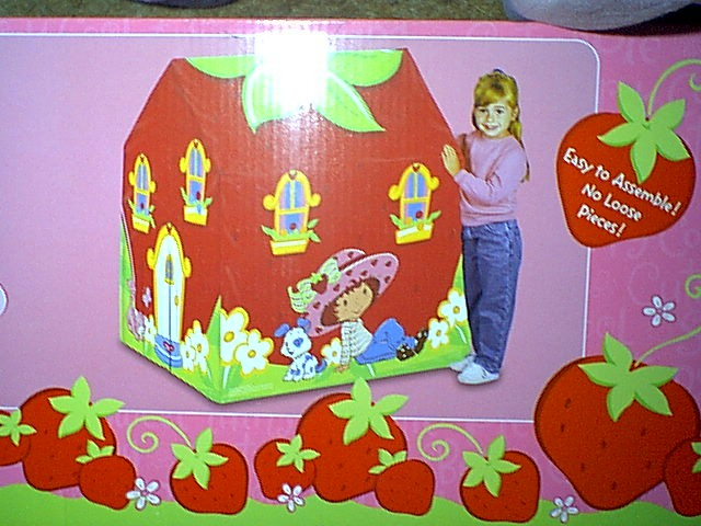 ABOVE This is the new Strawberry Shortcake Playhouse Tent. Itu0027s so cute and my daughter loves it. I found it at Toys-R-Us for much cheaper then itu0027s being ... & SSC 2003